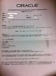 SJC-P6合格レポート